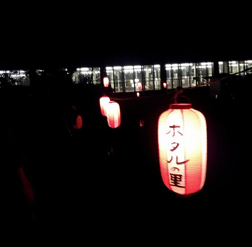 ichinokura_day_hotaru_4